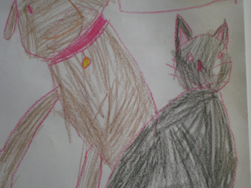 Pies i kot - rysunek Kacpra