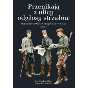"""Okładka książki """"Przenikają z ulicy odgłosy strzałów. Mundur i broń Wojsk Wielkopolskich"""" - cz. 2"""